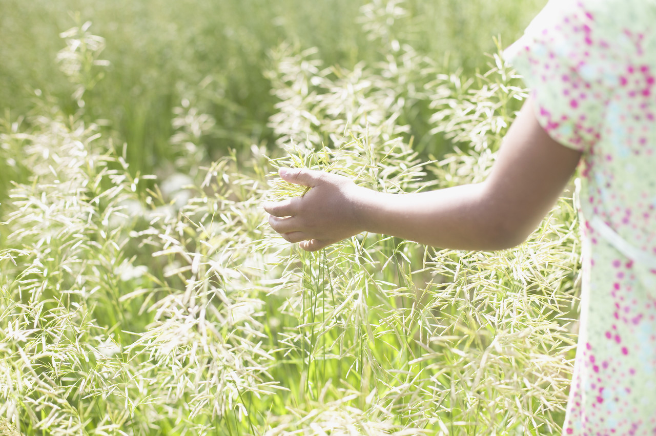 Rear view of a teenager girl standing in a field of tall grass --- Image by © Royalty-Free/Corbis